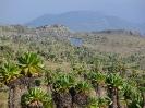 Mount Elgon_3