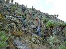 Mount Elgon_6
