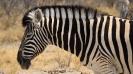 Namibia_13