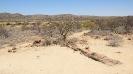Namibia_14