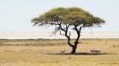 Namibia_1