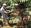 Fair Trade-Reise_1